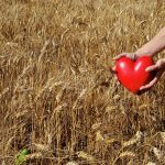 Woman with a red heart in a field - relationship